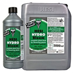 Hydro Bloom