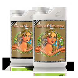 Sensi Bloom Coco